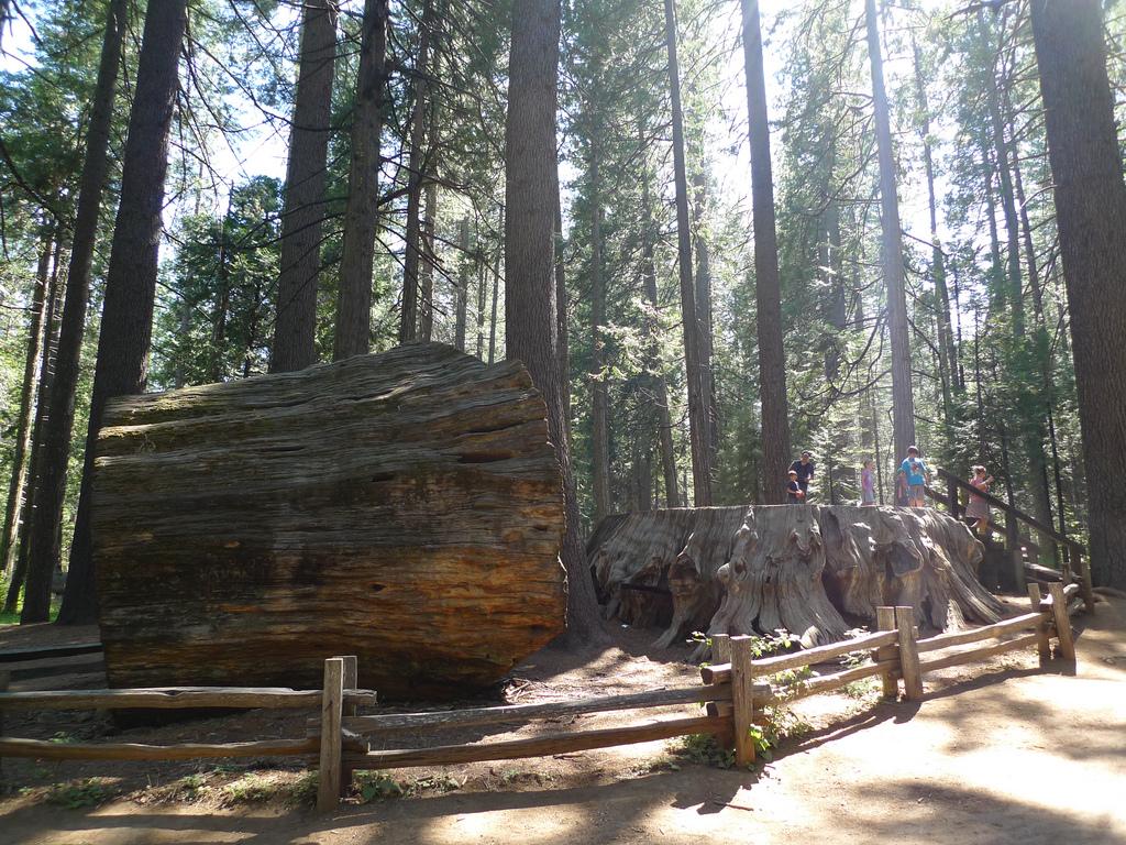 Big lecken State Park