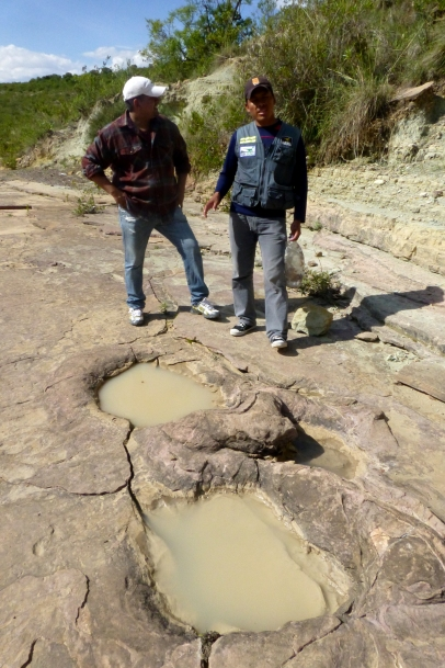 Another view of the same dinosaur tracks
