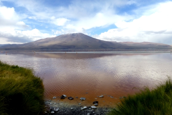 Another view of the Laguna Colorada