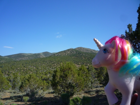 Our My Little Pony travel mascot at Cave Lakes State Park